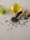 油菜油和油菜籽 免版税图库摄影