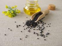 油菜油和油菜籽 免版税库存图片