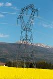 油菜籽的领域风景在登上朱拉背景中在法国 库存照片