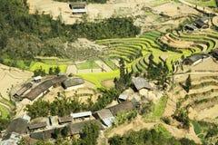 油菜领域在少数族裔村庄  库存照片