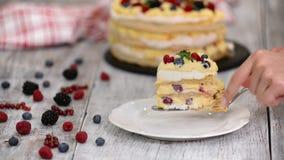 油酥点心蛋糕片断用乳蛋糕和无核小葡萄干莓果,莓,黑莓 o 股票录像