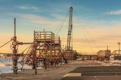 油,气体,领域,井,生产,开发,碳氢化合物,燃料,载能体,石油,西部,西伯利亚,群,油tr 免版税库存照片