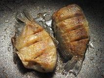 油腻的油煎的鱼 库存照片