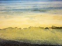 油滑的花粉 免版税图库摄影