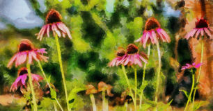 油画野花在一个夏天 免版税库存照片