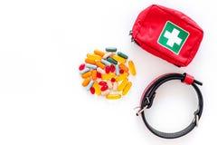 治疗为宠物猫和狗的工具与在修饰集合的药片治疗在白色背景顶视图大模型 免版税库存照片