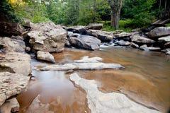 沼地小河在巴布考克的国家公园,西维吉尼亚的段磨房 免版税库存图片