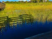 沼泽和桥梁 免版税图库摄影