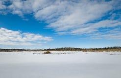 冻沼泽土地在冬天 库存照片