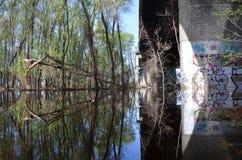 沼泽在桥梁下 库存照片
