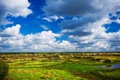 沼泽地区 库存图片