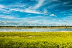 沼泽地和天空 免版税库存图片