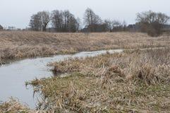 沼泽地在秋天 免版税图库摄影