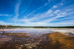 沼泽地在黄石公园 库存照片