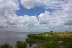 沼泽地在Gannan 免版税库存图片