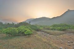 沼泽地的本质东涌河的 库存照片