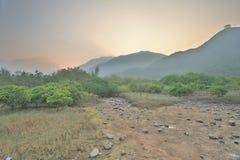 沼泽地的本质东涌河的 图库摄影