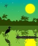 沼泽地2 库存照片