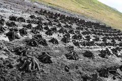 沼泽收获泥煤 免版税库存图片