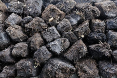 沼泽收获泥煤 免版税图库摄影