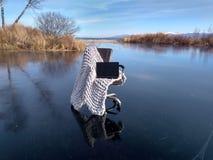 沼泽椅子 库存照片