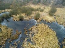 沼泽的空中图片在冬天 免版税库存照片