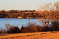 沿一个冻湖的野生生物栖所 免版税库存照片