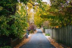 沿一个胡同的秋天颜色在伊斯顿,马里兰 库存照片