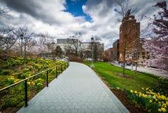 沿一个走道的庭院在宾夕法尼亚状态国会大厦Comple 库存图片