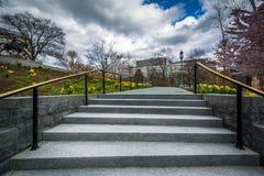 沿一个走道的庭院在宾夕法尼亚状态国会大厦Comple 库存照片