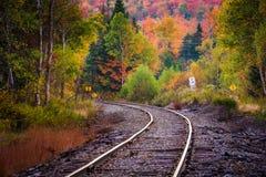 沿一个铁轨的秋天颜色在白色山全国F 免版税库存图片