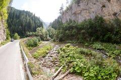 沿一条山河的狭窄的马达路在罗多彼州山的峡谷,非常长满与落叶和常青 免版税图库摄影