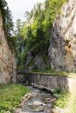 沿一条山河的狭窄的马达路在罗多彼州山的峡谷,非常长满与落叶和常青 库存照片