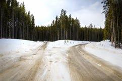 沿一条溜滑斯诺伊森林公路的叉子 库存照片