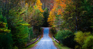 沿一条路的秋天颜色在Michaux状态森林,宾夕法尼亚里 库存图片