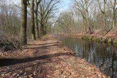 沿一条运河的树在比利时乡下 免版税库存图片