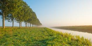 沿一条运河的树通过在日出的一个有薄雾的领域在秋天 库存图片