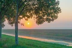 沿一条运河的树通过在日出的一个有薄雾的领域 库存照片