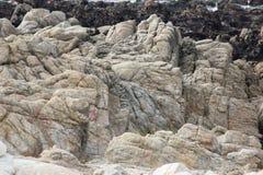 沿中国岩石, 17英里驱动,加利福尼亚,美国的冰砾 免版税库存图片