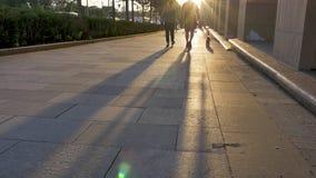 沿做长的阴影的路面的人和狗步行 股票录像