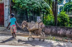 沿农村城市的共同的场面在盖帽Haitien,海地附近 库存照片