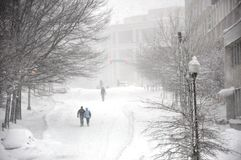 沿包括的雪街道 图库摄影