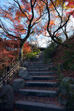 沿台阶的秋叶在日本寺庙 免版税库存图片