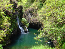沿向瀑布的hana ・夏威夷毛伊路 免版税库存图片