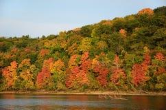 沿圣Croix河的秋天颜色 免版税库存照片