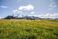 沿地平线分界和Mt的晚夏高山草甸 噬菌体 免版税库存照片
