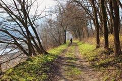 沿多瑙河的河沿的步行 瓦豪,奥地利,欧洲 免版税库存图片