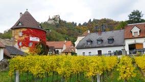 沿多瑙河银行的酒围场在Durnstein镇,奥地利附近的秋天 免版税库存照片