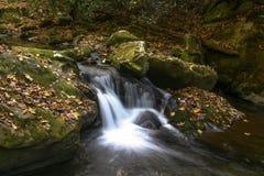 沿小河的瀑布在秋天的发烟性山 免版税图库摄影