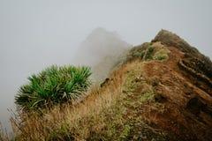 沿山土坎的有薄雾的足迹主角 在雾和陡坡掩藏的道路 圣安唐岛佛得角 库存照片